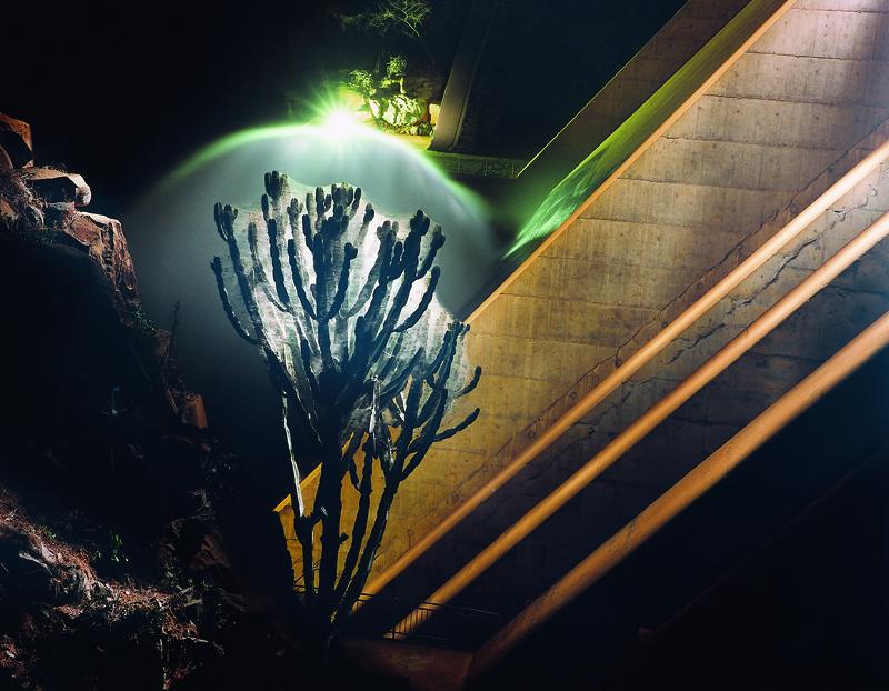 Dam wall with cactus. Zimbabwe