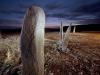 axum-29-guedit-stelae-field