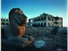 beyond-bagamo_11-lion