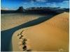 beyond-bagamo_3-dunes