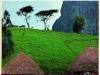 beyond-bagamo_7-hills