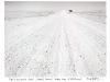 blackandwhiteshots_namib_naukluft_park_namib_desert_100km_from_swakopmund_namibia