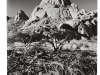 blackandwhiteshots_spitzkoppe_mountains_namiba