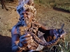 diesel-dust-portraits_the-great-zulu-sangoma-beyond-gingindlovu-south-africa-copy-2