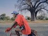 diesel-dust-southafrica_photographer-with-baobab-chiretzi-zimbabwe-copy
