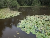 29-peace-pool-spanbroekmolen-crater