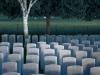 79-hooge-crater-cemetery-bellewaarde