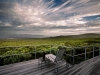 Grootbos Private Nature Reserve. Western Cape. South Africa.