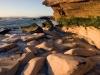 walker-bay-nature-reserve-tidal-rocks