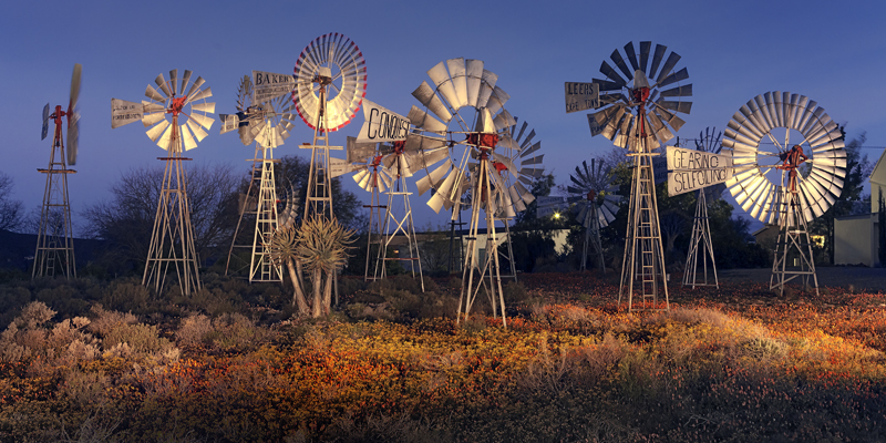Karoo. Northern Cape. South Africa.