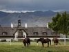 lomarins-stables-franschhoek-valley-sa-2011_0