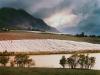 y10619 - Africa, South African Republic, Western Cape. Riebeek Kasteel, vineyards. - Africa, Suedafrika, Westkap, Riebeek Kasteel, Weinberge. 2007.  - 60_MB.  Copyright: Obie Oberholzer / Bilderberg