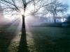 y10620 - Africa, South African Republic, Western Cape, Tulbagh. Morning mist.  - Africa, Suedafrika, Westkap, Tulbagh. Morgendunst. 2007.  - 61_MB.  Copyright: Obie Oberholzer / Bilderberg