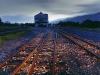 y10620 - Africa, South African Republic, Western Cape, Bonnievale. Abandoned rail tracks. - Africa, Suedafrika, Westafrika, Bonnievale. Verlassene Bahngleise. 2007.  - 60_MB.  Copyright: Obie Oberholzer / Bilderberg