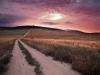 rooderust-farm-evening-light-near-darling-south-africa-2011_0