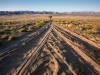 sand-roads-with-solitary-quiver-tree-vandersterrberge-richtersveld-national-park-south-africa-2010