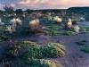 y9912 - Africa. South Africa, Northern Cape Province. Pofadder District. Evening landscape. - Afrika, Suedafrika, Northern Cape. Pofadder. Landschaft am Abend.   - 54 MB.  Copyright: Obie Oberholzer / Bilderberg