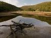 the-salt-river-de-vasselot-section-tsitsikamma-national-park-between-keurbooms-beach-and-natures-valley-south-africa-2010_0