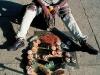 longagoway_shoe-cleaner-maputo