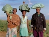 locals-with-cabbages-near-pontdrift-south-africa-2009