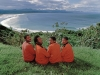 the-waiters-plettenberg-bay-with-tsitsikamma-mountains-south-africa-1997
