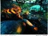 Tyrannosaurus killing Brontosaurus. Dinosaur Park. Sudwala Caves. Mpumalanga. South Africa. '99.