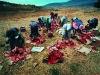 Local women chopping up cattle heads. Near KwaMiya. KwaZulu – Natal Drakensberg. South Africa. '99.