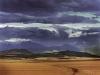 A landscape in the Swartland area near the village of Riebeek-Kasteel. South Africa.
