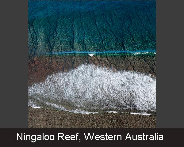 13. Ningaloo Reef. Western Australia