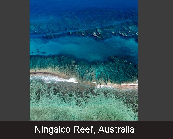 14. Ningaloo Reef. Australia