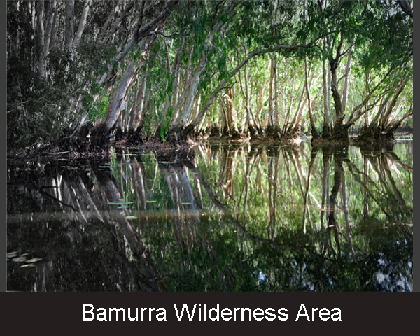 2. Bamurra Wilderness Area