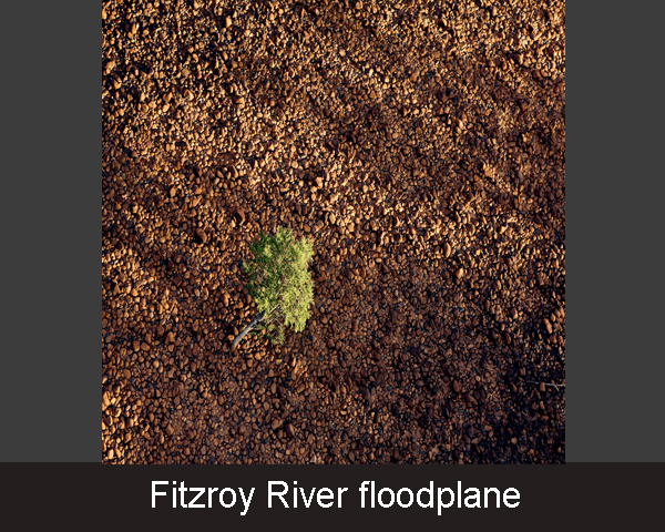 2. Fitzroy River floodplane