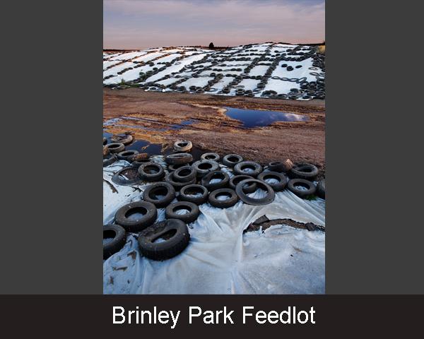 2.Brinley Park Feedlot