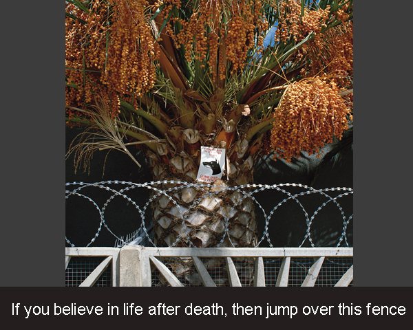 3. If you believe in life after death, then jump over this fence