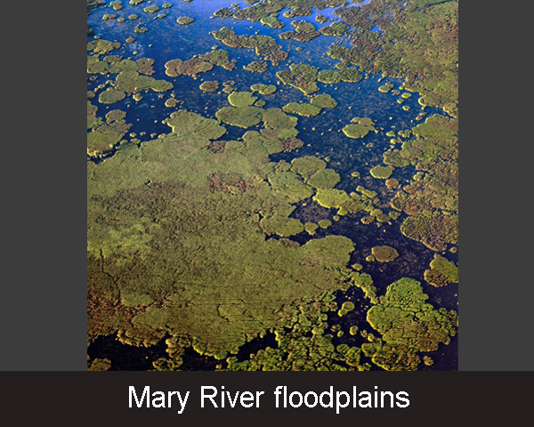 3. Mary River floodplains