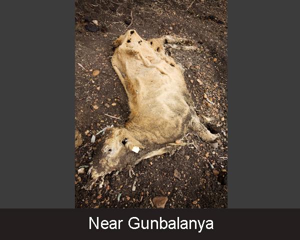 4. Near Gunbalanya