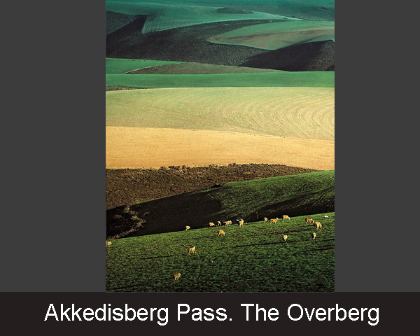 Akkedisberg Pass. The Overberg