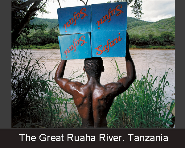 The Great Ruaha River. Tanzania