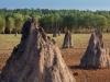 3-bamurru-plains-copy