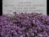 15-war-grave-in-belgium