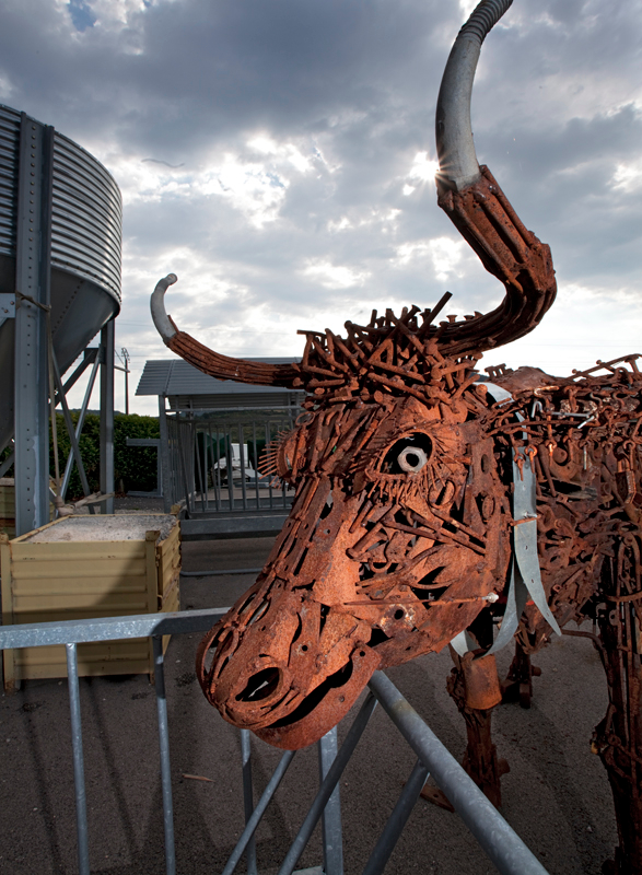 129-scrapmetal-cow-outside-village-of-lauras-france