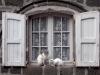107-salers-medieval-town-france