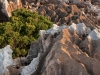 rock-formations-at-homhill-plateau-on-socotra