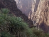 steep-sides-of-wadi-dirhor-socotra_0