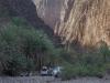 wadi-dirhor-gorge-socotra