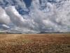 South Africa. Eastern Cape Province. Karoo area.