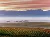 berg-river-valley-with-vineyards-near-riebeek-kasteel-swartland-south-africa-2006