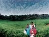 chimanimani-tea-plantations-eastern-highlands-zimbabwe-1986
