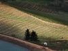 elandskloof-wine-farm-near-villiersdorp-cape-wine-area-south-africa-2011