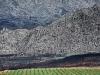 fire-damaged-landscape-skurweberg-mountain-witzenberg-valley-south-africa-2008_0